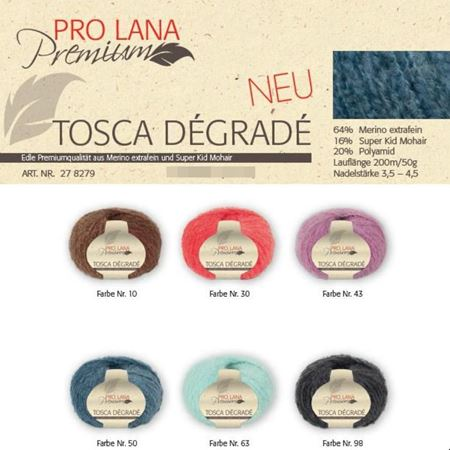 Bild für Kategorie Pro Lana Premium Tosca Dégradé 50g