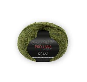 Bild von Roma von Pro Lana Farbe 72